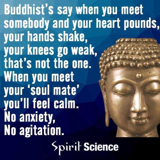 Had to share this! #thoughtofthenight @spiritscienceofficial