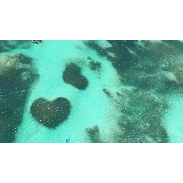 #loveisintheair two hearts in the Caribbean, a natural formation from the Coral reefs in the Caribbean Sea, in #bavarobeach in the #dr / #bellezasdelanaturaleza dos corazones en el Caribe, formaciones naturales de arrecifes de coral en el Mar Caribe, en la playa de Bavaro en #rd #actress #producer #dominican #caribbean #bavaropuntacana #islandgirlinLA #islandliving #locationscouting #upintheair #naturesbeauty #makingmoves #makingmovies #makingithappen @helidosa @helidosaexcursions @deimonc @anivalm @edigo_23 @edwardxp1
